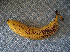 The Banana Podcast