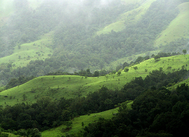 The Battle To Protect Kudremukh